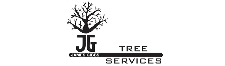 JG trees - Client of MoMac